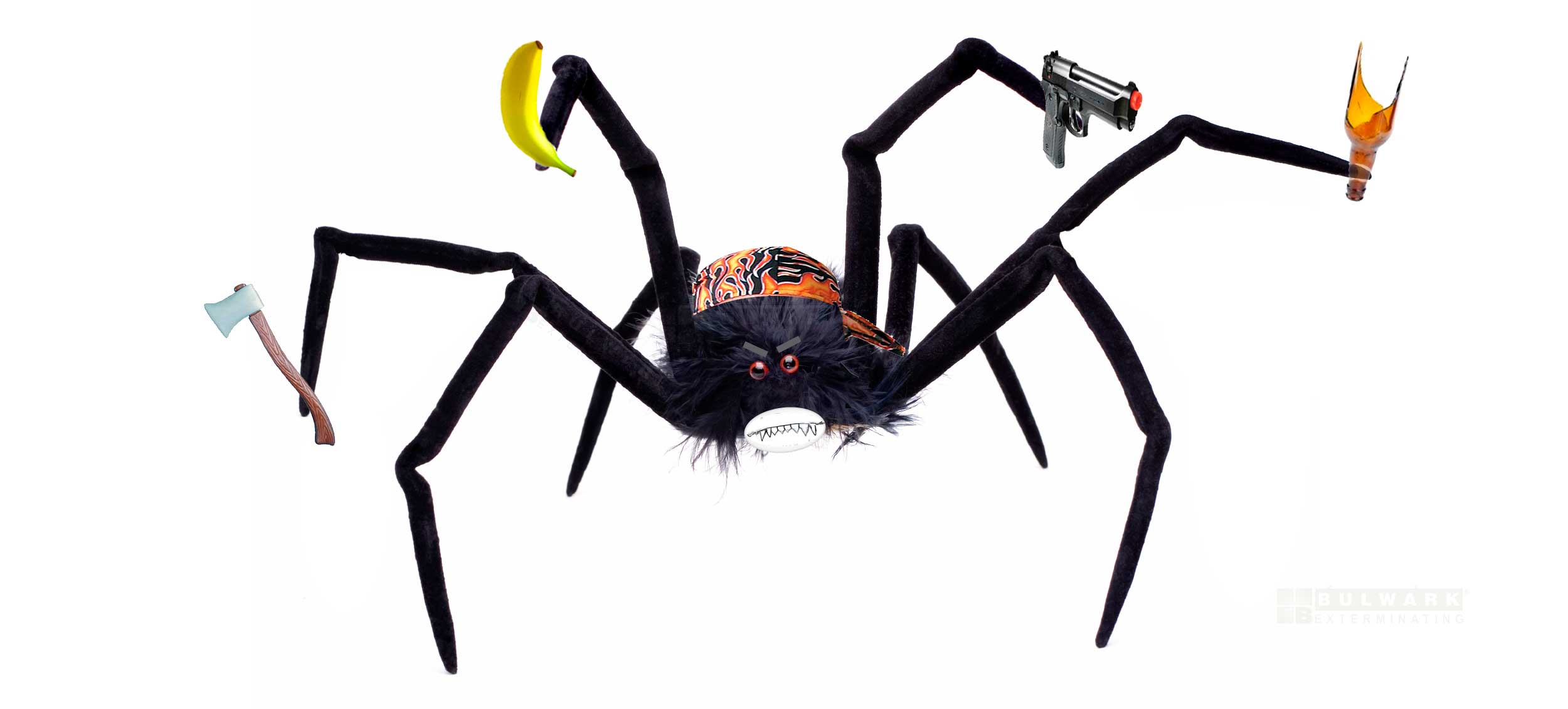 Fake_Spider_Intruder911