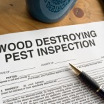 Wood_Destroying_Pest_Inspection_Document