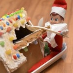 elf-shelf-ginger-house-pest